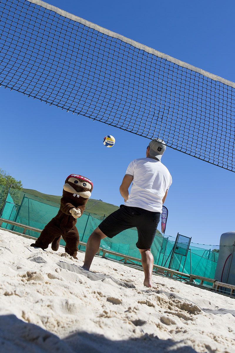 beach volley/soccer